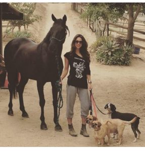 Equestrian Style - Leilani Dowding