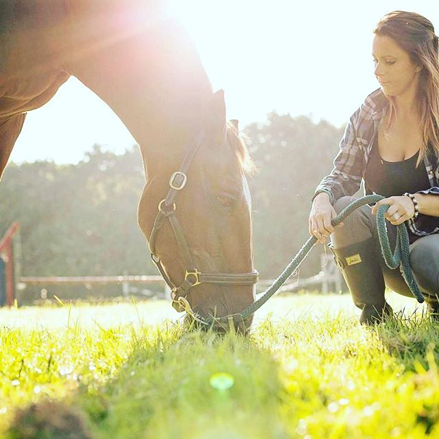 20 Ideas to do with your horse when you can't ride during lockdown